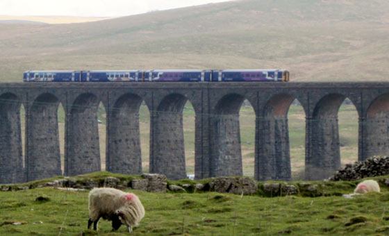 The Ribblehead Viaduct on the Settle-Carlisle Railway